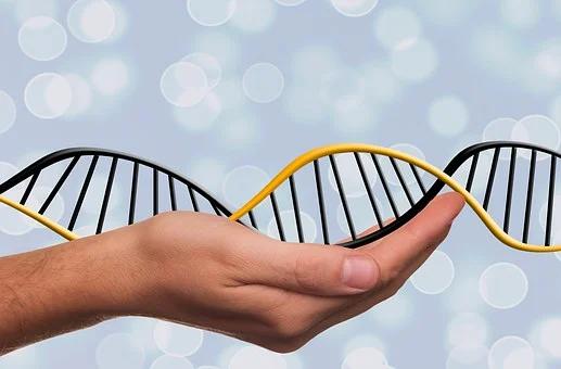Les prélèvements possibles pour faire un test ADN
